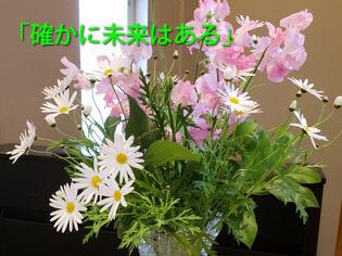 礼拝案内 2020年2月9日(兵庫教区礼拝交流)